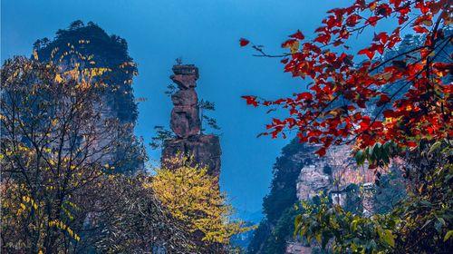 杨家界自然保护区