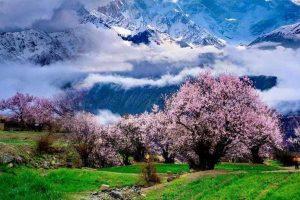 西藏天珠是什么材质的 西藏天珠是什么